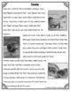 Differentiated Nonfiction Unit: Seals