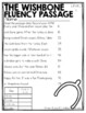 Differentiated November Fluency/Comprehension Passages wit