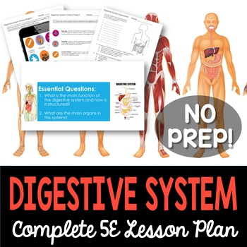 Digestive System Complete 5E Lesson Plan