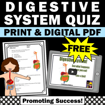 FREE Download Digestive System Video and Worksheet Science