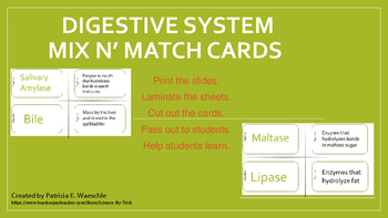Digestive System - Mix N' Match Cards