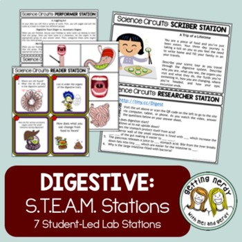 Digestive System - Science Centers / Lab Stations