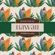 Digital Papers - Hawaiian (DP4888)
