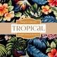 Digital Papers - Tropical Elements (DP4002)