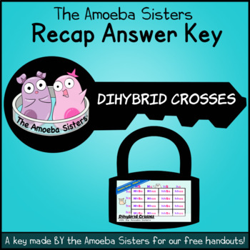 Dihybrid Recap Answer Key by The Amoeba Sisters (Dihybrid