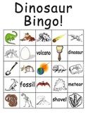 Dinosaur and Plural Words Bingo sheets