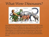 Dinosaurs Vol 1: Fossils - Slideshow Powerpoint Presentation