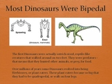 Dinosaurs Vol 2: First Dinosaurs - Slideshow Powerpoint Pr