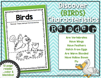 Discover Animals {Birds} Science Reader for First Grade &