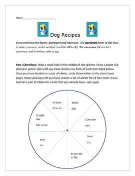Dog Recipes Activity: learning about inherited traits