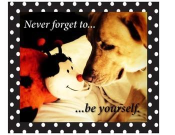 Dog and Ladybug Poster