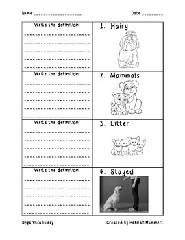 Dogs Vocabulary