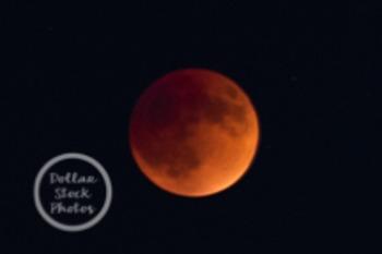 Dollar Stock Photo 138 Lunar Eclipse