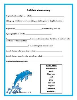 Dolphin Vocabulary
