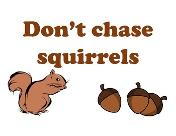 Don't Chase Squirrels Sign