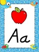 Doodle Boho Bird Themed Alphabet Posters DNealian Font {Ha