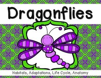 Dragonflies: minibook on adaptations, life cycle and habitats