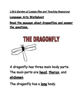 Dragonfly Worksheet