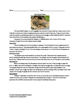 Duck Billed Platypus - Review Article Questions Vocabulary