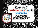 Duck for President Interactive Mentor Sentence Teaching Po