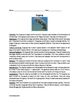 Dugong - Marine Mammal - Review Article Facts Info Questio