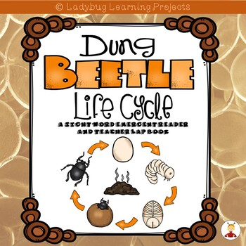 Dung Beetle Life Cycle  (A Sight Word Emergent Reader and