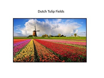 Dutch Tulip Fields One-Point Perspective Powerpoint