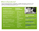 Dyscalculia Information Handout