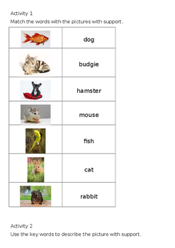 EAL Literacy Topic 12 - Pets