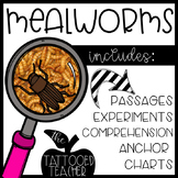 EEW! Mealworms {a life cycle unit for budding biologists}