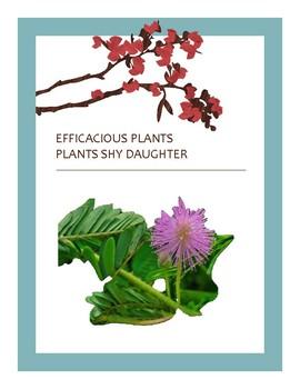 EFFICACIOUS PLANTS 19