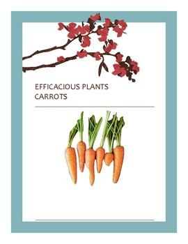 EFFICACIOUS PLANTS 3