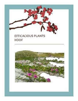 EFFICACIOUS PLANTS 30
