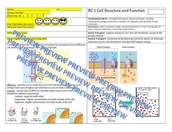 EOC STAAR REVIEW-Osmosis and Diffusion