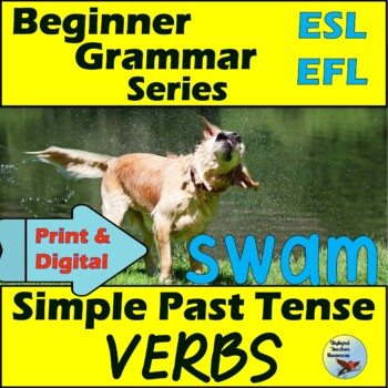 ESL EFL Simple Past Tense Verbs Vocabulary and Writing Activities