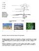 ESL Assessment for Environmental Science