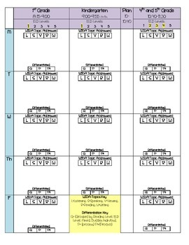 ESOL Lesson Plan format with differentiation and WIDA