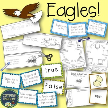 Eagles Activity Set
