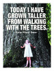 Earth Day / Science Quotes Printable Posters - Set of 8