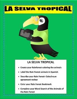El Gran Capoquero-Tropical Rainforest Animals-Gender/Noun
