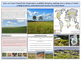 Grasslands & Tundra - Earth Science and Geography - Unit 12