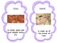 Earth's Surfaces Vocabulary Cards