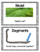 Earthworm Unit