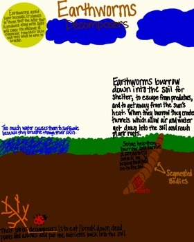 Earthworms Poster or Handout (Animal Adaptions, Decomposers)