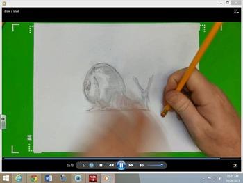 Easy To Draw Snail Draw A Snail