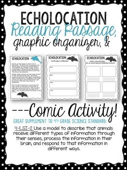 Echolocation Passage, Graphic Organizer, & Comic Activity.