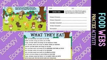 Ecology: Food Web Activity
