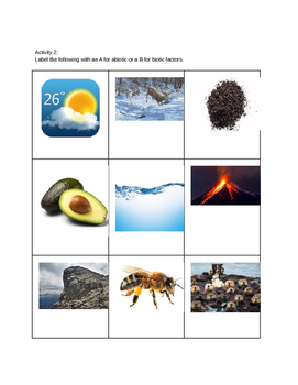 Ecology:  Notes and Activities for Abiotic And Biotic Factors