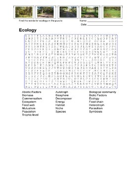 Ecology Word Search Puzzle