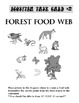 Ecosystem Food Chain Web Task cards (5), bell work, starte